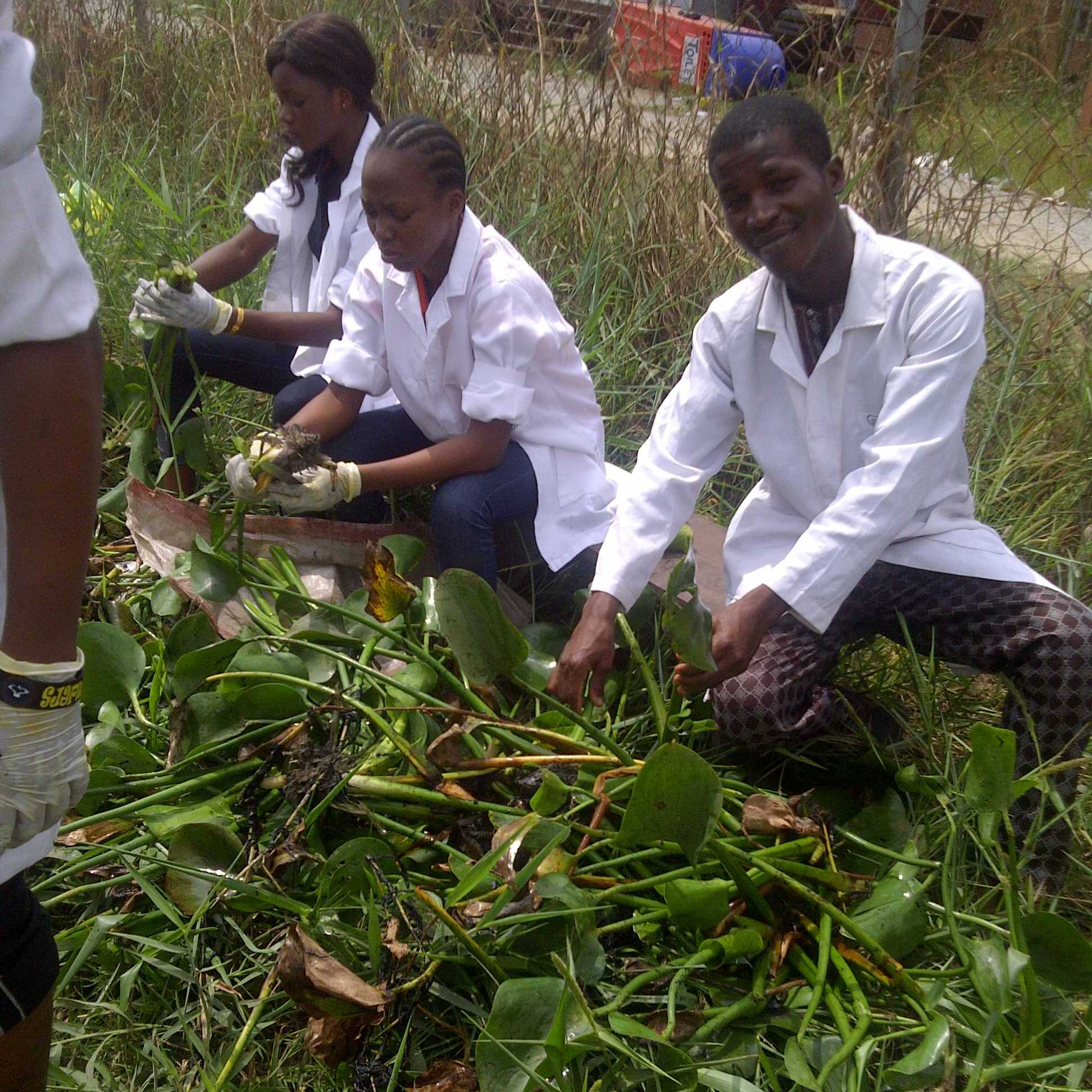 Students at work on the field